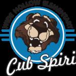 cub spirit 1